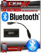 BLUETOOTH audio streaming via media ingång kit