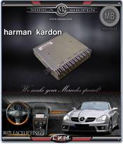 C6. H/K förstärkare till NTG 2.5 ljudsystem till Mutlimedia enheterna.